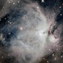 Orione,                                walfieri