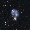 NGC 7008 - Fetus Nebula,                                Łukasz Sujka