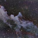 IC 2118 (Witch head Nebula),                                Rodrigo