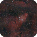 Cone nebula and the Christmas tree cluster,                                urban.astronomer