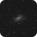 NGC 925,                                Josef Büchsenmeister