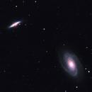 Bodes Nebula M81 and M82,                                Derek Foster