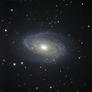 M81,                                Howie Silleck