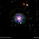 ngc3344 galassia nel leone minore                                                          distanza 59 milioni  A.L.,                                Carlo Colombo