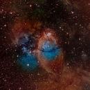 IC 1795 - The Fishhead Nebula in the Hubble Palette,                                Kevin Dixon