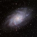 "M33 using a 6"" F/6.45 Melior Apo,                                hbastro"
