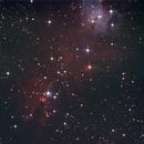 NGC2264,                                Oliver Runde