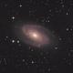 M81, Bode Galaxy,                                AstroGearTH
