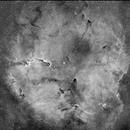 IC 1396,                                Jean-Louis Tressol