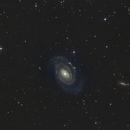 NGC5364,                                Trabatti Roberto