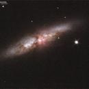 M82,                                Seldom