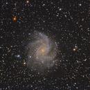NGC6946 dal Passo Gavia,                                Edoardo Luca Radice (Astroedo)