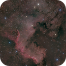 NGC 7000 - The Great Wall in the North America Nebula,                                Rudolf Bumm