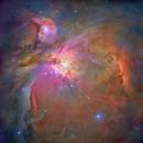 M42 - Orion Nebula,                                Steven Marx