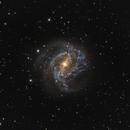 M83,                                tomasmangabeira