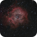 Rosette Nebula RGB,                                Rodd Dryfoos