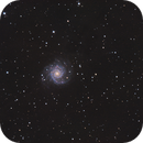 M74 on Lacerta 250 and ASI 294MC,                                Piet Vanneste
