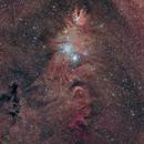 Christmas Tree, Cone, Snowflake, Fox Fur Nebula NGC 2264 Ha+OSC,                                Brandon Tackett
