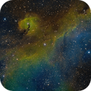 Nebulosa de las Gaviota SHO,                                Sady  Contreras