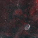 Crescent and Soap Nebula,                                Dan Pelzel