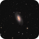 NGC 2903 HA LRGB,                                Fritz