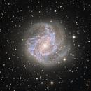 A quick M83,                                Rick Stevenson