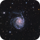 M101,                                The Disastronomers