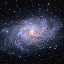 M33 - The Triangulum Galaxy,                                Tim
