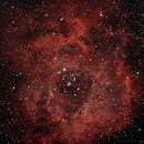 Rosetta,                                agostinognasso
