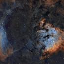 NGC 7822,                                Paddy Gilliland
