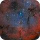 IC 1396 (LRGB and Narrowband Merge),                                Craig Prost