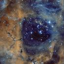 Caldwell 49 - Rosette Nebula,                                Emilio Zandarin