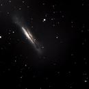 NGC3628, Hamburger Galaxy, Sarah's Galaxy,                                Kees Neve