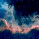 Cygnus wall HA & O3,                                Patrick mcevoy