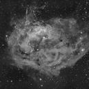 Sh2-261 (Lower's Nebula -2021 version in b&w),                                pete_xl