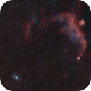 Thor's Helmet NGC2359, Seagull-Nebula IC2177  --  Tri-Narrow-Band shot,                                Rolf Dietrich