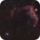 Thor's Helmet NGC2359, Seagull-Nebula IC2177  --  DUO-Narrow-Band shot,                                Rolf Dietrich
