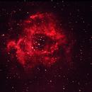 NGC 2244_Rosetten-Nebel,                                Silkanni Forrer