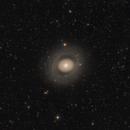 Messier 94,                                Fabian Rodriguez Frustaglia