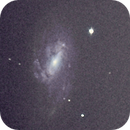 Messier 66 and 65,                                Neil Emmans