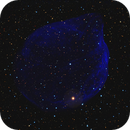 Sh-2 308 in Canis Major,                                equinoxx