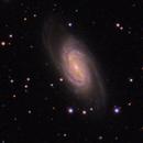 NGC 2905,                                Michael Finan