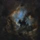 NGC7000 in SHO,                                Usernamealreadytaken