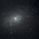 M33 Spiral Galaxy Located in Triangulum,                                Tim Scott