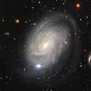 NGC 4981,                                Giuseppe Donatiello