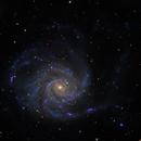 M101 the Pinwheel Galaxy,                                rayp