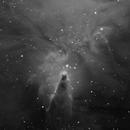 Cone Nebula Ha,                                Rodd Dryfoos