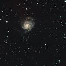 M101 / NGC5457, NGC5474, NGC5486,                                Stefano Zamblera