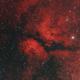 IC1318 Butterfly Nebula,                                christianhanke