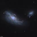 NGC 4490 & 4485 (ARP269) - Cocoon Galaxy,                                Łukasz Sujka